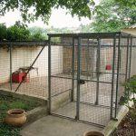La pension des chats du refuge SPA de Poitiers