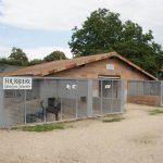 La fourrière pour les chiens au refuge SPA de Poitiers