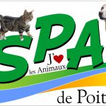 Soutenez le refuge SPA de Poitiers